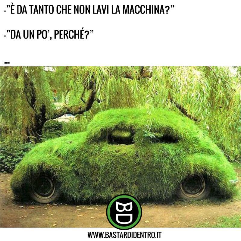 Ora di lavare la macchina